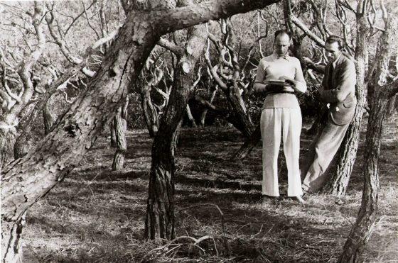 Lanza et Luc en forêt.
