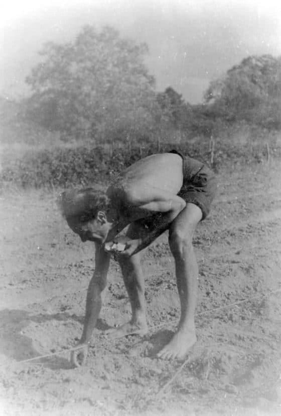 Lanza del Vasto - Tournier, 1948 : le blé.