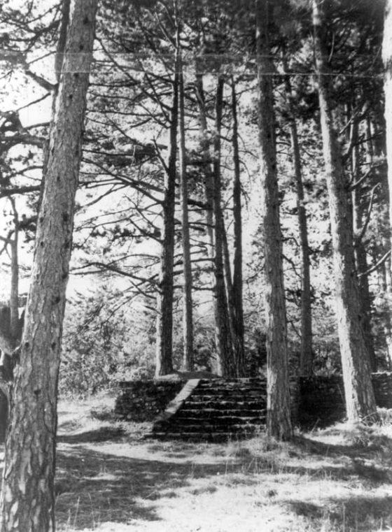 Lanza del Vasto - Sa tombe sur la colline des grands sapins.